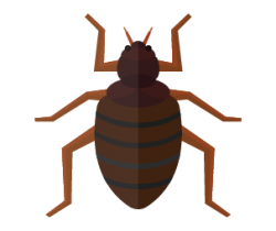 Bedbugs Icon